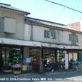 2009.01.09up  Honkatata/本堅田146