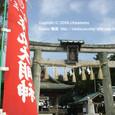 2009.02.03up  Honkatata/本堅田162