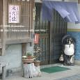 2009.03.02up Honkatata/本堅田031(2)