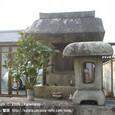 2009.03.27up  Honkatata/本堅田179
