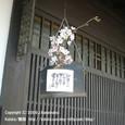 2009.04.01up Honkatata/本堅田180