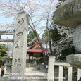 2009.04.04up Honkatata/本堅田182