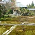 2009.04.17up Honkatata/本堅田190
