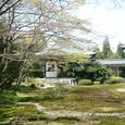 2008.06.12up Honkatata/本堅田058