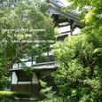 2008.06.13up Honkatata/本堅田059