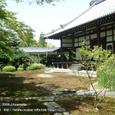 2008.06.14up Honkatata/本堅田060