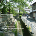 2008.06.20up Honkatata/本堅田063