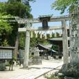 2008.06.21up Honkatata/本堅田064