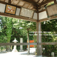 2008.06.22up Honkatata/本堅田065