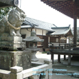 2008.06.23up Honkatata/本堅田066