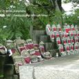 2008.08.28up Honkatata/本堅田103