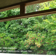 2008.08.29up 2010.08.30up Honkatata/本堅田104