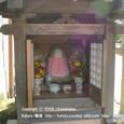 2008.10.09up Honkatata/本堅田113