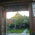 2008.10.23up  2009.10.24up Honkatata/本堅田123