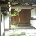 2009.10.23up Honkatata/本堅田197