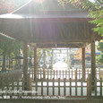 2008.11.22up  Honkatata/本堅田126