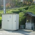 2008.12.03up  Honkatata/本堅田130