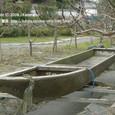 2008.12.17up  Honkatata/本堅田136
