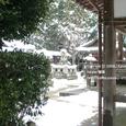 2008.02.21公開 Honkatata/本堅田022