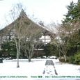 2008.02.25up Honkatata/本堅田024