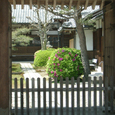 2008.05.26up Honkatata/本堅田050