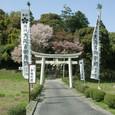 2009.03.09up Honkatata/本堅田175-2