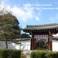 2010.03.22up Honkatata/本堅田237