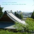 2010.04.08up Honkatata/本堅田246