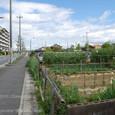 2010.05.25up Honkatata/本堅田286