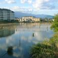2009.11.08up 堅田内湖 ~Honkatata/本堅田207
