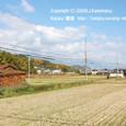 2009.12.03up Honkatata/本堅田214