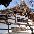 2011.02.04up Honkatata/本堅田344