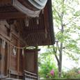 2011.05.14up Honkatata/本堅田393