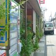 2010.08.20up Honkatata/本堅田308