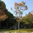 2010.10.17up Honkatata/本堅田319