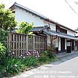 2012.05.22up Honkatata/本堅田451