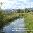 2009.11.05up 堅田内湖 ~Imakatata/今堅田071