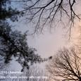 04 2010年1月1日、朝の空