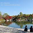 36 紅葉の風景、滋賀(1) 県立近代美術館北側の日本庭園「夕照の庭」にて(池の前でくつろぐ人たち)