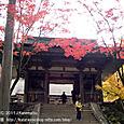 38 紅葉の風景、滋賀(3) 湖東三山・西明寺(二天門の前で)