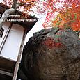 39-2 紅葉の風景、滋賀(4-2) 不動寺