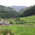27 Hata_no_tanada 湖西の里山から・畑の棚田