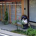 2011.12.27up<br/>京都・年の瀬の風景(2-7)~貴船