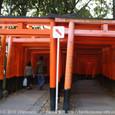 2010.12.30up<br/>京都・年の瀬の風景(1-4)~伏見稲荷