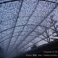 2011.03.02up<br/>なばなの里ウインターイルミネーションを見に行く~長島(1-2)