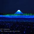 2011.03.02up<br/>なばなの里ウインターイルミネーションを見に行く~長島(1-6)