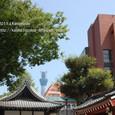 2011.08.26up<br/>2010年夏、東京にて(09-2) 浅草公会堂の向こうに、東京スカイツリー
