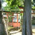献饌供御人行列(03) 神田神社、朝の静寂