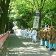 献饌供御人行列(19) 京都・下鴨神社 糺の森参道巡行