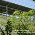 2008.06.30up Station/駅037 堅田駅31